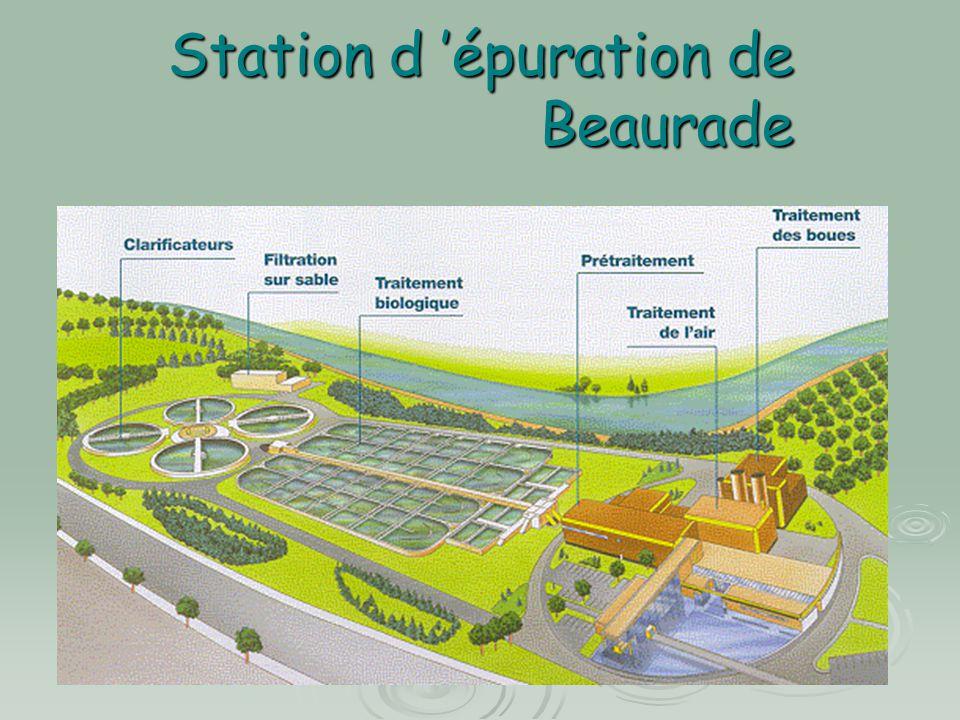 Beaurade